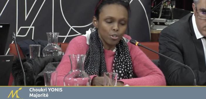 Intervention ( CM 6 février 2019 ) : Choukri Yonis – Fonds de dotation